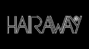 hairaway-e1602537923852.png
